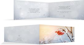 Weihnachtsgrußkarte Reif - Hellblau (K33)