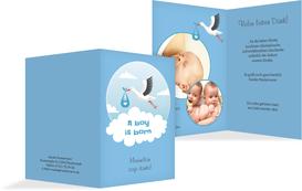 Dankeskarte zur Geburt Storch Junge - Blau (K20)