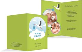 Dankeskarte zur Geburt Storch Junge - Grün (K20)