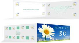 Einladung zum Geburtstag Lebensfreude 30 - Grün (K33)