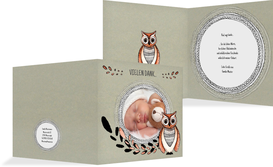 Baby Dankeskarte Vintage Eule - Grün (K24)