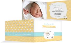 Babykarte Schäfchenherde - Orange (K19)